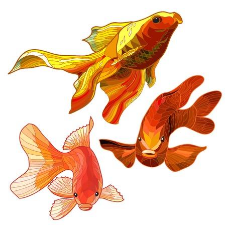 peces de acuario: Conjunto de oro abstracto de pescados del acuario. Ilustraci�n vectorial
