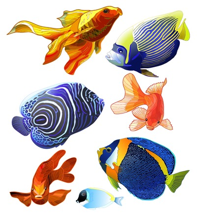 Set of exotic colorful fish. Abstract isolated fish on white background. Vector illustration Vector