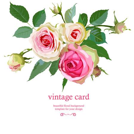 Floral Background with Vintage Label 免版税图像 - 30543776