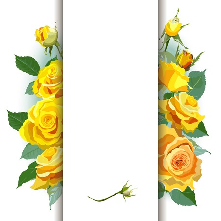 yellow roses: Floral Background with yellow roses
