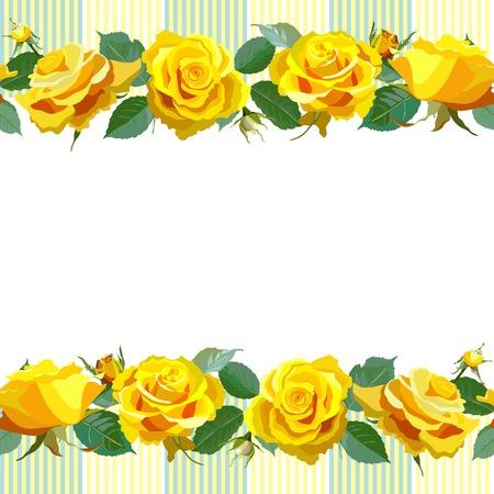 gele rozen: Bloemen Achtergrond met gele rozen