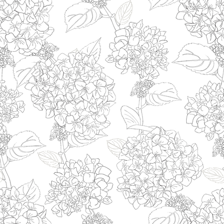 Seamless pattern with hydrangea flowers and leaves. Black and white floral background. Abstract monochrome texture with realistic flowers.Vector illustration