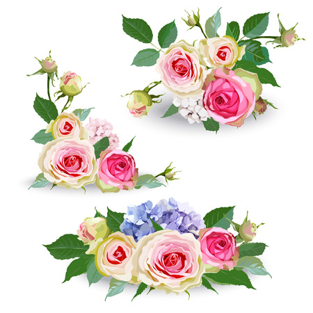 Bouquet of hydrangea flowers with roses and leaves. Isolated floral object on white background. Vector illustration. Editable element for design.