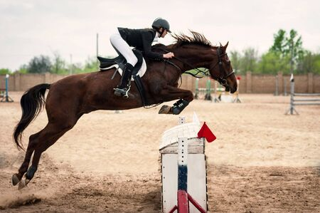 salto de valla: Brown horse with horsewoman jumping fence, summer day