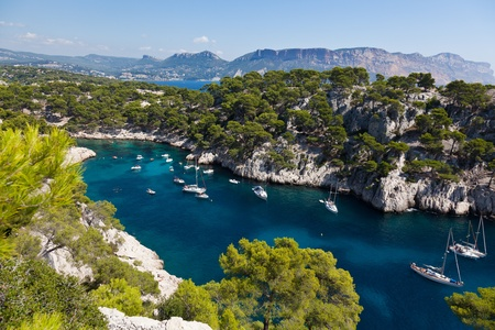 south coast: Calanques of Port Pin in Cassis  in France