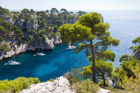 marseille: Calanques van Port Pin in Cassis in Frankrijk Stockfoto