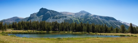 yosemite national park: Beautiful panoramic view of national park in California - USA Stock Photo