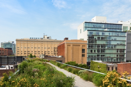 garden center: High line park in Manhattan, New York - USA