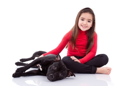 pitbull: Little caucasian girl playing with her pet, isolated on white background Stock Photo