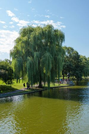 commons: View of the Common park lake in Boston, Massachusetts -USA Stock Photo