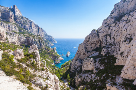 pine creek: Calanques near Marseille and Cassis in south of France Stock Photo