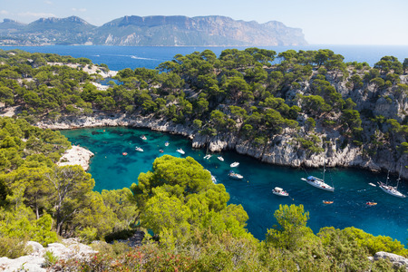 azure coast: Calanques of Port Pin in Cassis  in France
