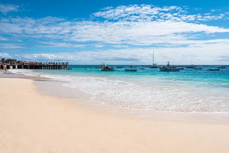 santa maria: Santa Maria beach in Sal Cape Verde - Cabo Verde