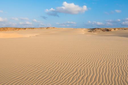 praia: Waves on sand dunes  in Chaves beach Praia de Chaves in Boavista Cape Verde - Cabo Verde