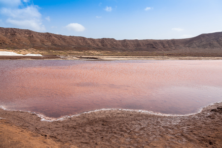 salt marsh: Salt marsh of Salinas  in Sal Cape Verde - Cabo Verde Islands