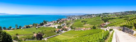montreux: Vineyards in Lavaux region - Terrasses de Lavaux terraces, Switzerland