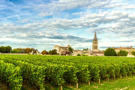 Vignobles de Saint Emilion, vignobles de Bordeaux en France par une journée ensoleillée