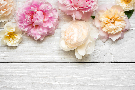 pink and creamy peony flowers with roses on white wooden background. flat lay. top view with copy space. mock up. wedding card
