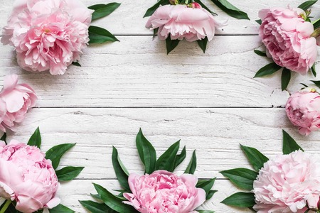frame made of pink peony flowers over white wooden table with copy space. flower composition. top view. flat lay. nature concept
