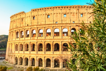 view of Colosseum in Rome, Italy in the sunrise light