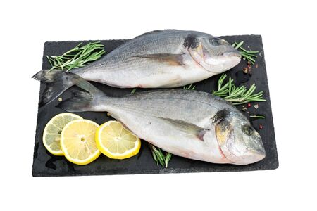 Fresh fish dorado or sea bream. Raw fish seabass with spices and herbs ingredients for cooking isolated on white background. healthy diet food