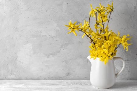 spring yellow forsythia flowers on concrete background with copy space. still life. womens day or wedding concept