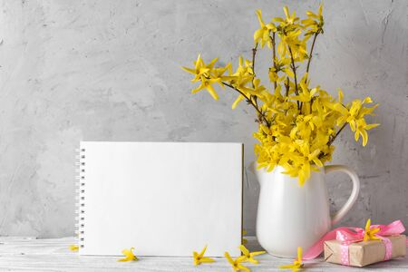 Still life with a beautiful spring yellow forsythia flowers, gift box and blank paper notebook on concrete background. mock up. holiday or wedding background