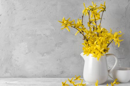 womans day or spring concept. still life with yellow forsythia flowers and coffee cup on concrete background with copy space Stok Fotoğraf