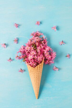 Spring pink cherry blossoming flowers in waffle cone on blue background. Minimal spring concept. flat lay. top view. vertical orientation Stok Fotoğraf