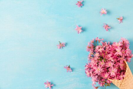 Spring pink cherry blossoming flowers in waffle cone on blue background. Minimal spring concept. flat lay. top view with copy space