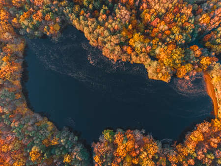 Lake in autumn forest aerial drone view. Trees with colorful orange, red, yellow and green leaves. nature concept Imagens