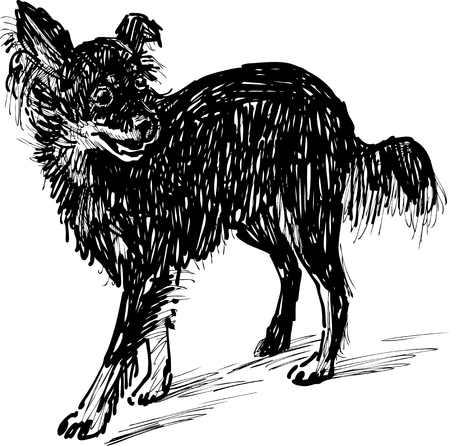 The vector image of a black lapdog.
