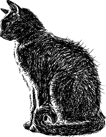 Le dessin vectoriel d'un chat maison noire. Banque d'images - 80477502