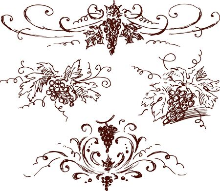 The vector doodles of the decorative vine.