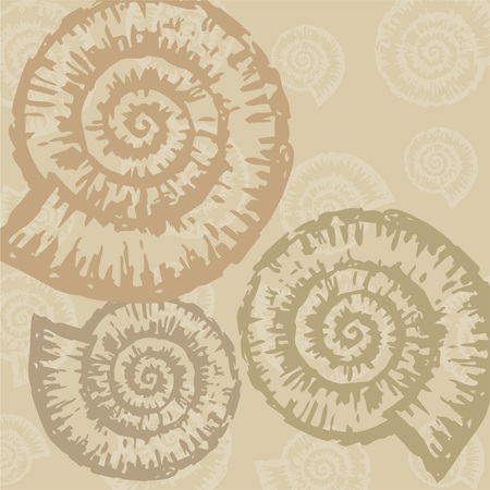 The vector background from decorative seashells. Çizim