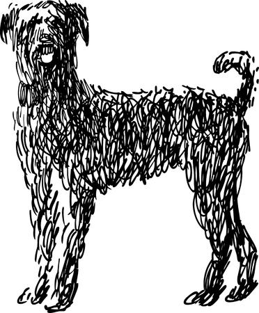 Croquis vectoriel d'un chien hirsute. Banque d'images - 80427025