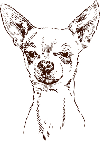 Vector image of the portrait of a cute dog.