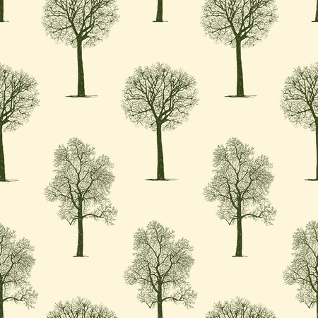 tree isolated: A Vector pattern of the trees silhouettes.