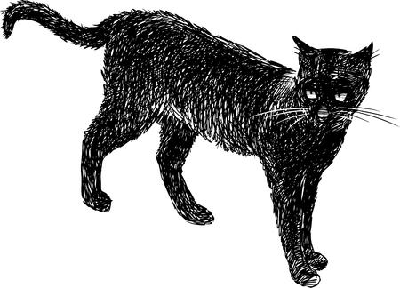 Vector drawing of a domestic black cat. Çizim