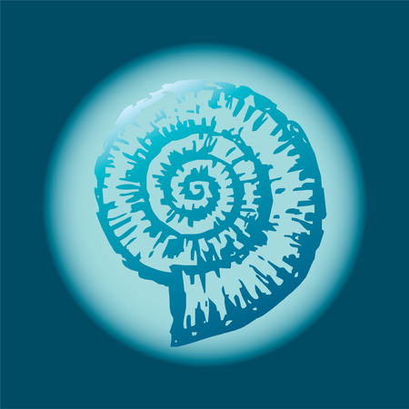 Vector drawing of a fossil mollusc - nautilus. Ilustrace