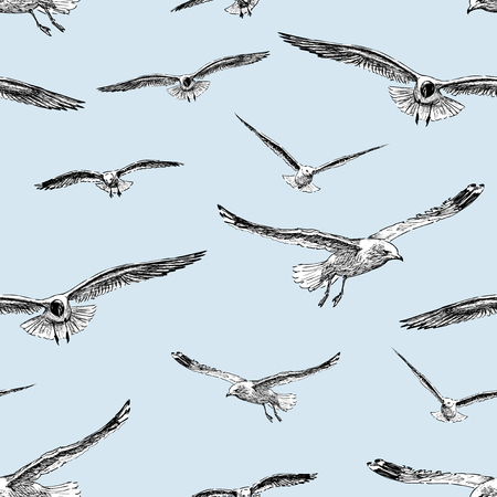 Vector pattern of the flying sea gulls.