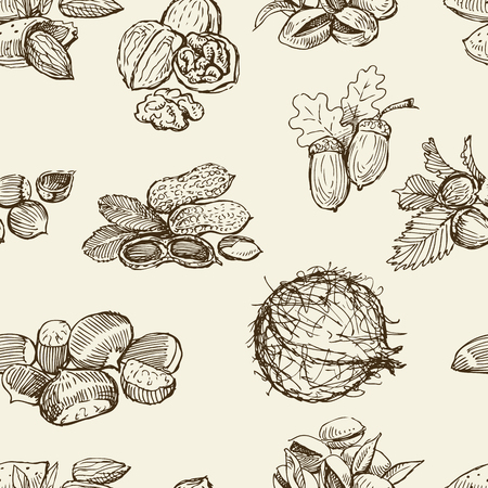 Vector pattern of the different nuts.
