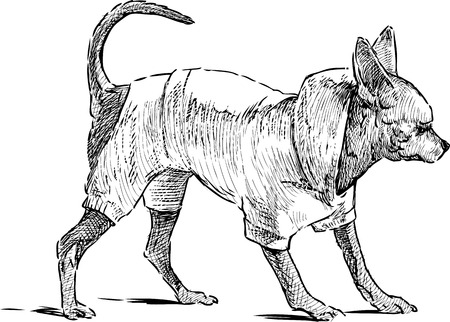 Vector sketch of a toy dog on a walk.