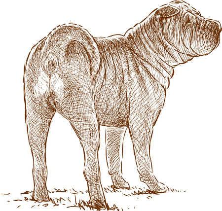Vector drawing of a watching gurad dog.
