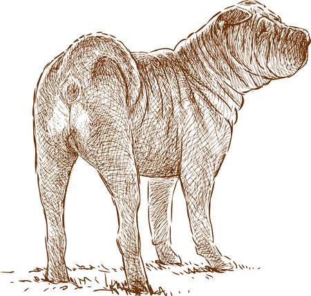 Vector drawing of a watching gurad dog.