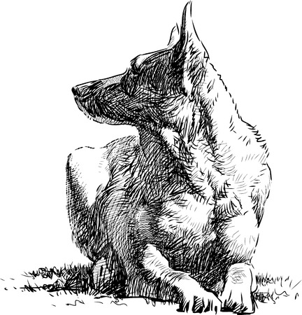 Vector sketch of a lying dog