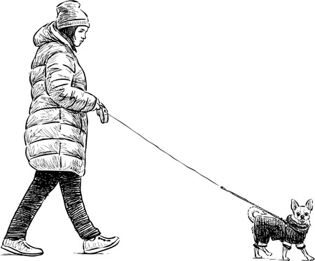 striding: Vector sketch of a townswoman wth her pet on a stroll
