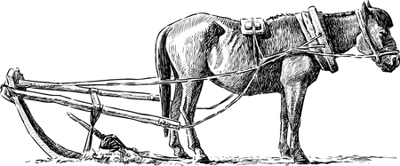 Vector image of a horse on an arable land