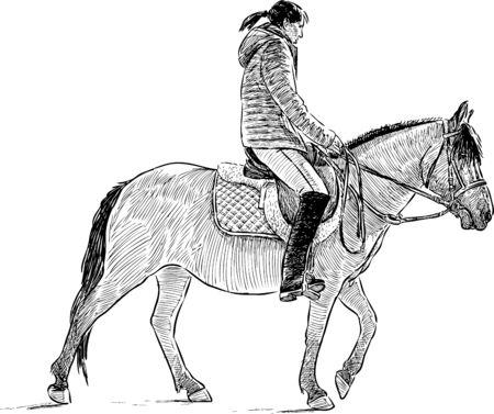 Sketch of a horseback riding girl Illustration