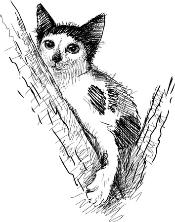 defenseless: A spotted kitten on a tree Illustration